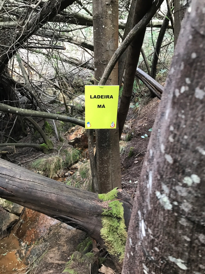 Ladeira Má - A subida ao Céu seria bastante dura a partir daqui... | 4º Trail do Zêzere