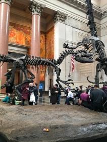 Museu Nacional de História Natural de Nova Iorque